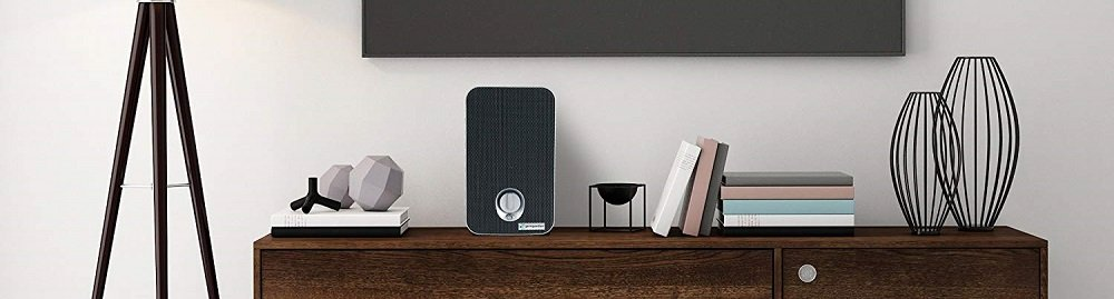 5 Best Air Purifiers for Smoke
