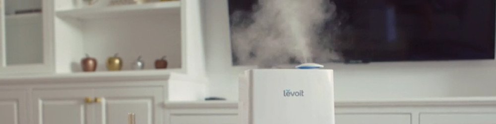 The 5 best humidifiers on the market