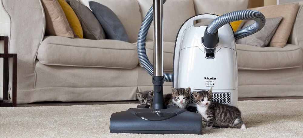Compact C1 Pure Suction Canister Vacuum
