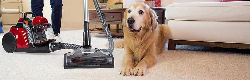 Electrolux EL4335B Ultra Flex Canister Vacuum Review