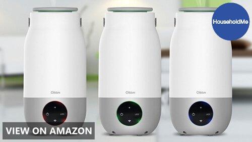 Oittm Wifi Smart Humidifier Review