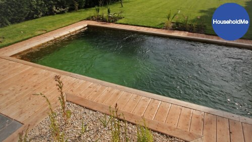 algae on bottom of pool