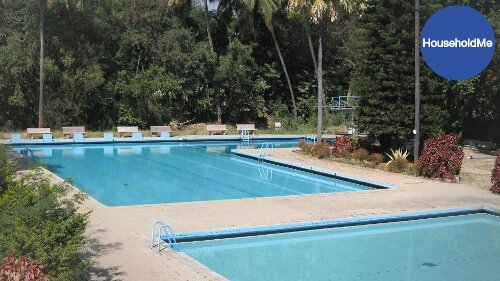 How To Clean An Algae Infested Pool