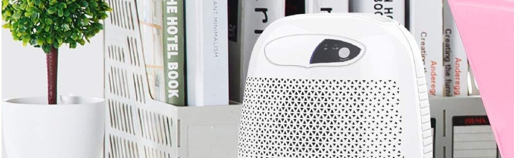 Best dehumidifier to Kill mold