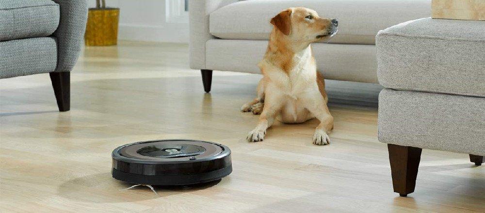 Roomba 891 vs 890