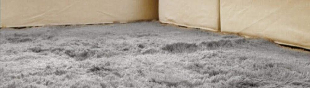 Ways to Get Mold Out of Your Carpet