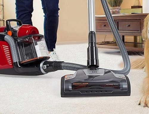 🥇 Upright Vacuum vs Canister Vacuum: What to Pick?