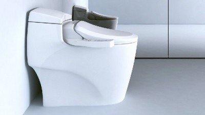 Bio Bidet Ultimate BB-600 Advanced Bidet Toilet Seat Review