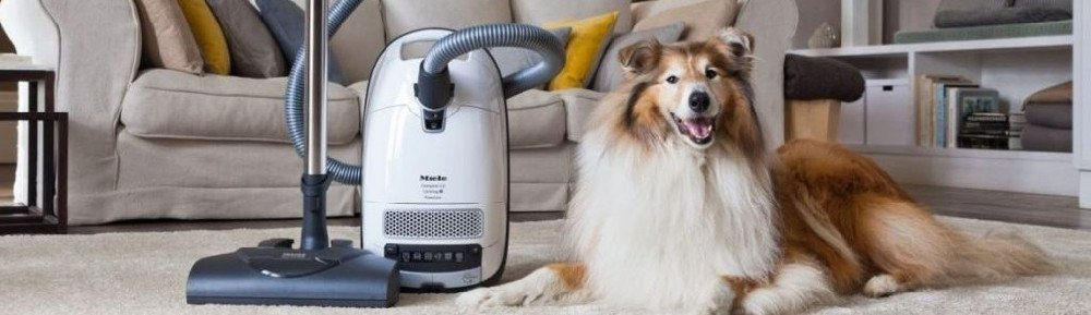Which Miele canister vacuum is best?