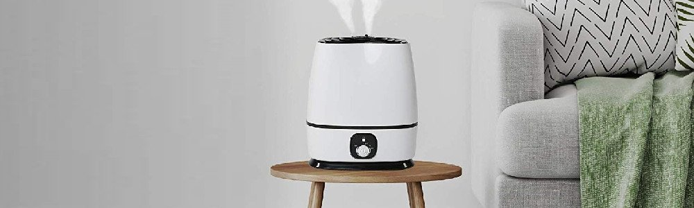 Best Asthma Humidifier