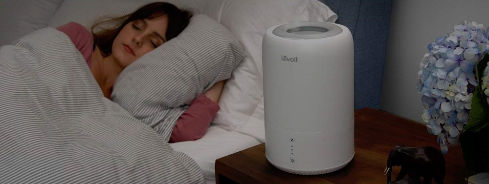 Best Levoit Humidifiers