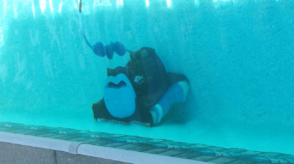Dolphin Nautilus Review