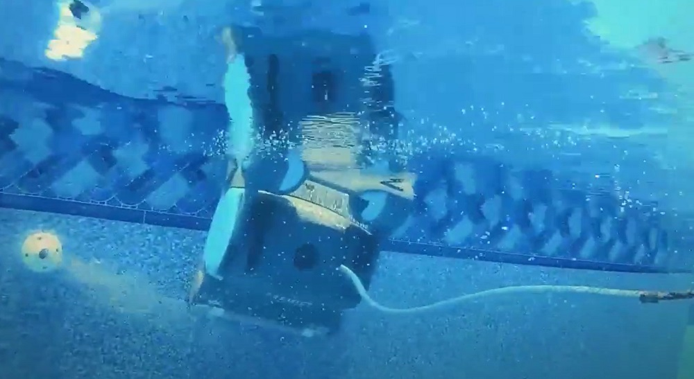 Dolphin Premier vs Triton vs Nautilus vs Quantum