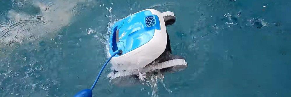 Dolphin Proteus DX3 Review