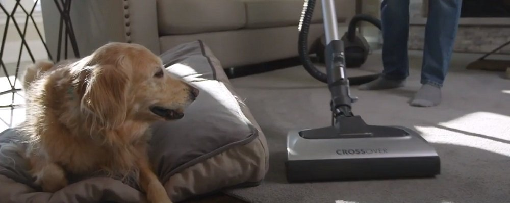 Best Kenmore Canister Vacuums