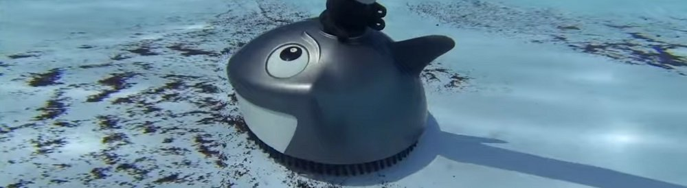 Pentair 360100 Lil Shark Pool Cleaner Review