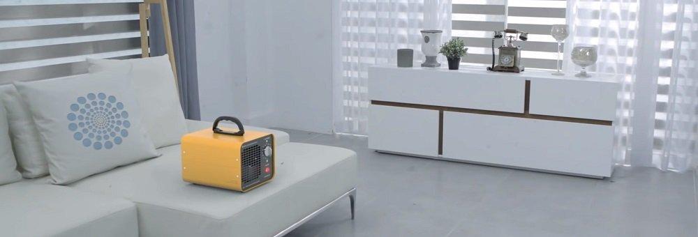 Air Purifier or Ionizer