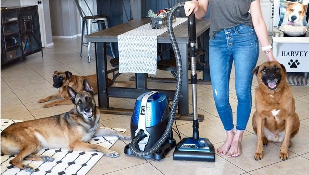 Best Water Filter Vacuum Cleaners