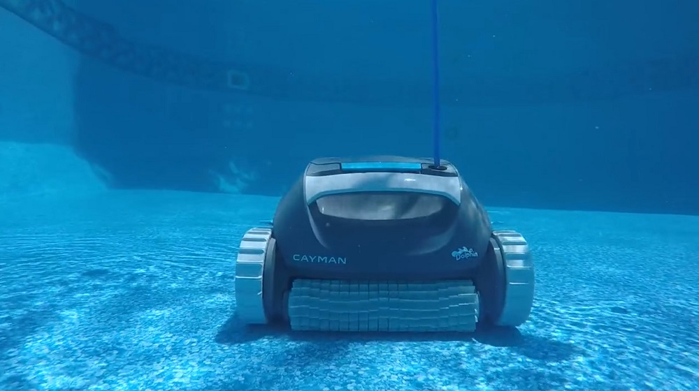 Dolphin Cayman Review