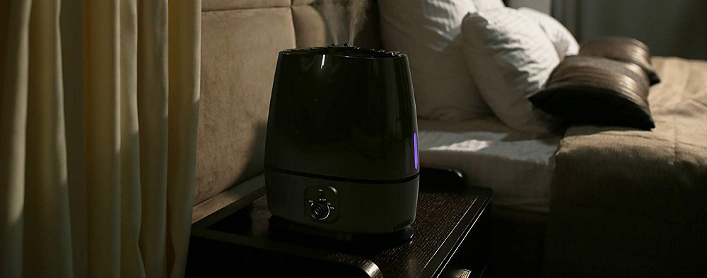Everlasting Comfort Cool Mist Humidifier