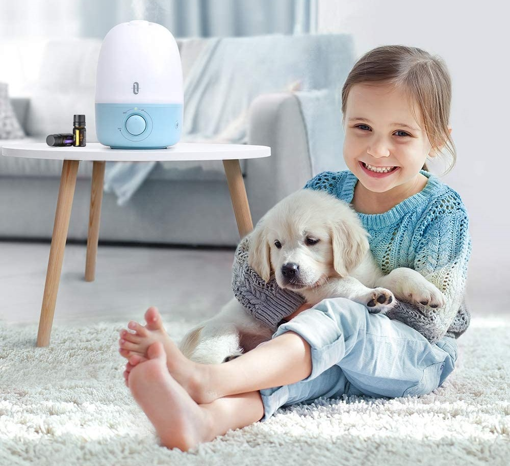 Best Humidifier for a baby