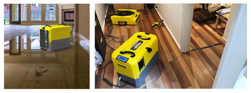 Crawl Space Dehumidifier Reviews
